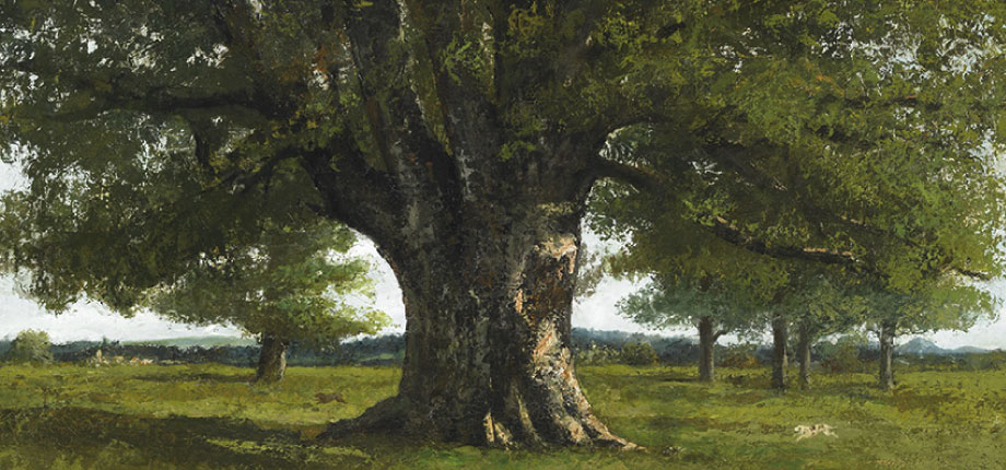 Courbet and Nature